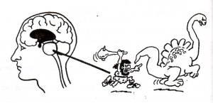 sumber : http://hil4ry.wordpress.com/2007/07/26/pembagian-otak-manusia/
